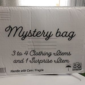 Plus Size Mystery Bag
